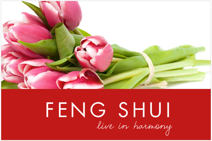 cm_category_fengshui_02